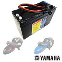 YAMAHA SEA SCOOTER Battery RDS 250 & RDS300 長寿命バッテリー ZS4C2ヤマハ バッテリー RDS 250 & RDS300専用シースクーター水中スクーター 電動スクーター バッテリー単品 電池