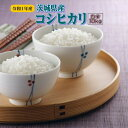 10kg コシヒカリ お米 元年産 茨城県産 送料無料『令和...