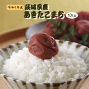 10kg 送料無料 お米 元年産 10キロ 『令和1年茨城県産あきたこまち白米10kg』【RCP】