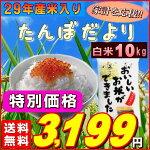 『たんぼだより白米10K』【RCP】【米10kg送料無料】