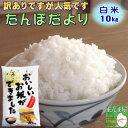 10kg お米 白米 安い 訳あり ブレンド米 送料無料 『国内産たんぼだより白米10kg』【RCP】
