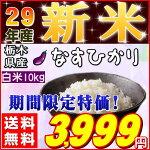 『栃木県産なすひかり白米10kg』【RCP】