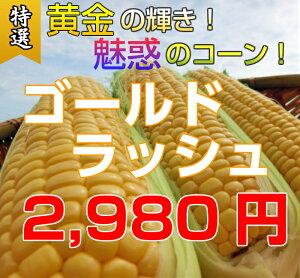埼玉県深谷産 とうもろこし ゴールドラッシュ