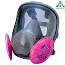 アスベスト(石綿)対策用全面型防じんマスク 6000F/2091-RL3