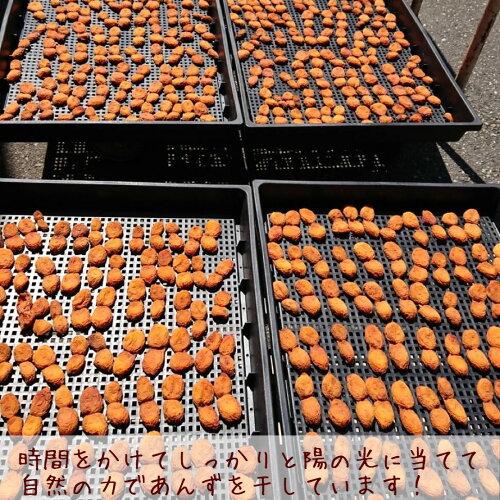 【NEW】あんずのスイーツ杏(アプリコット)チョコレートクランチ。さらに美味しくなって新発売!国産干しあんず増量したスイーツ!あんずの里の杏(アプリコット)チョコレートクランチ!