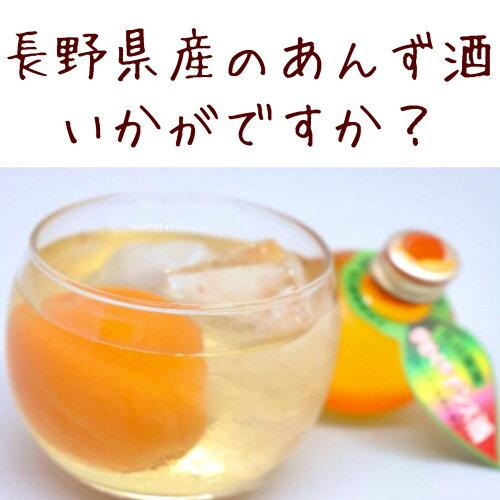 かわいいあんずの実のボトル入り!ひとくちアンズ酒(5コ入)、ギフト、バレンタイン