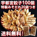 Top100_3