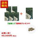 トリプルカットACT 120粒 ×5+1袋(8100円分)( メント 健康食品 亜鉛 ビタミンc ギムネマ ギフト プレゼント