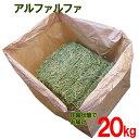 牧草 アルファルファ 圧縮 20kg