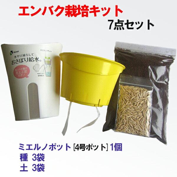 アオキ産業『エンバク栽培キット 7点セット』