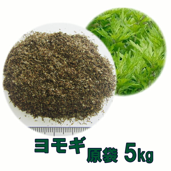 種子 ヨモギ 5kg 送料無料