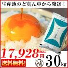 青森ブランド米青天の霹靂30キロ食味「特A」