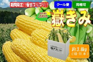 朝採りとうもろこし【嶽きみ】4kg(10-11本)※冷蔵※販売期間前