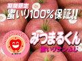 センサーで選別された蜜入り100%保証!!【『みつまるくん』サンふじ2kg(7〜8玉)】