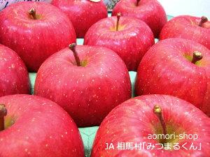 JA相馬村【みつまるくん】蜜入りサンふじ5kg(18-20玉・青森県産)