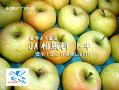 安全・安心・おいしい★JA相馬村【贈答用・トキ】3kg(10玉)