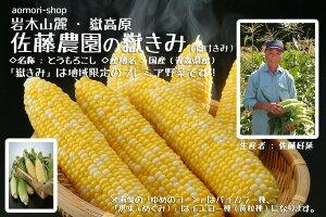 朝採りとうもろこし【嶽きみ(だけきみ)】4kg(10-11本)※冷蔵