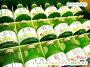 Shiny(シャイニー)【りんごジュース5品種詰合せ・SA-30】180ml×18本