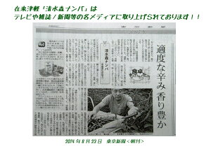 幻の唐辛子【清水森ナンバ®】青トウガラシ1kg※他の商品は同梱不可。