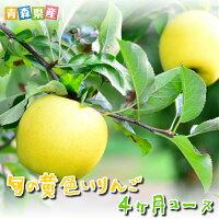 旬の黄色いりんご4ヶ月