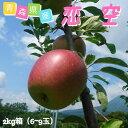 【8月中旬発送】穫れたて!青森県産りんご 恋空ご家庭用 2k