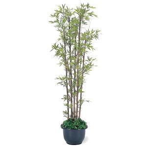 【送料無料・人工植物】黒竹7本立 鉢付 1.8m