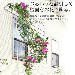 壁面にお花や緑を育てて美しく魅せるEGラティス ウォールアーチ【RCP】(花/ガーデン/DIY/ガーデ...