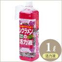 【肥料】シクラメン底面給水活力液1L