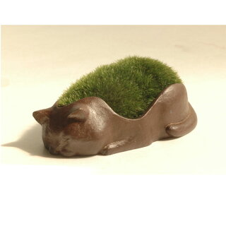 【品品小林健二景色盆栽】モダン盆栽猫