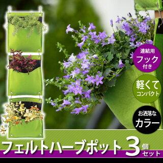 【ガーデニング/家庭菜園】フェルトハーブポットライムグリーン3個セット