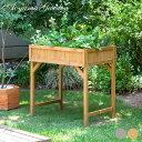 家庭菜園 ガーデニング/レイズドベッドプランター ハーブタイプ/ナチュラル/グレイウ……