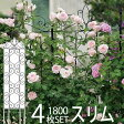 G-story デザイントレリススリム 1800 4枚セット 【ローズガーデン】【庭 仕切り】【アイアンフェンス】【バラ クレマチス】