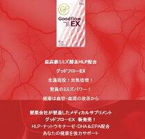 GoodflowEX(グッドフローEX)ミミズ乾燥粉末含有食品
