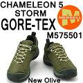 メレルカメレオン5ストームゴアテックスM575501NEWOLIVEMerrellCHAMELEON5STORMGORE-TEXメンズアウトドアゴアッテックススニーカー