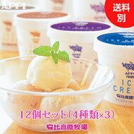 人気No.1アイスクリームギフト♪バニラ・山ぶどう・チョコチップ・コーヒー全12個入