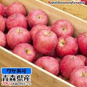 青森産りんご20kg木箱入り訳アリ品種おまかせ【沖縄・離島は送料4,320円】