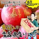【おまけ付き】青森産りんご 「超」ワケあり!!美味しくないのも入ってるかも!!品種:サンふじ、王林、シナノゴールドなど【ご注意:沖縄・離島は送料4,320円】【あす楽対応】 - Apple&StrawberryCompany
