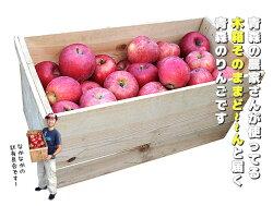 【送料無料】青森産りんご「超」ワケあり!!美味しくないのも入ってるかも!!1箱の中でも当たり外れあると思います!!ジュースや加工用にどうぞ【ご注意:沖縄・離島は送料4,320円】【あす楽対応】
