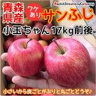 【楽天スーパーSALE】青森産りんご訳ありサンフジ小玉ちゃん17kg箱入(内容量17kg前後)