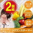 【1000円ポッキリ 送料無料】 シリコンスチーマー 2個セット 温野菜