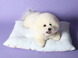 【COOL商品】超クール/WラッセルふわふわクッションM犬猫ベッドのappydog
