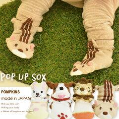 出産祝い ギフト POP UP SOX ポップアップソックス【出産祝いなどギフトに最適】全部で5種類♪ ...