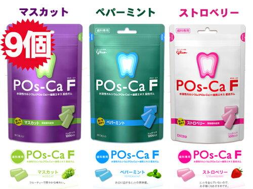 ★歯科専用★ポスカ・エフ
