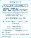 【赤穂化成】熱中対策水 1ケース×24本入 (レモン味・日向夏味)500ml 【飲料水 ソフトドリンク 水分補給 夏 暑さ対策 真夏日】