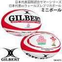 【予約販売】記念ボール 2020 ラグビー 日本代表国際試合 サマーシリーズ ギルバート GILBERT ラグビーボール 日本代表vsウェールズ レプリカミニ サポーターボール 【6月上旬〜中旬以降発送】【キャンセル不可】【返品不可】GB-93 ミニボール/GB-9373