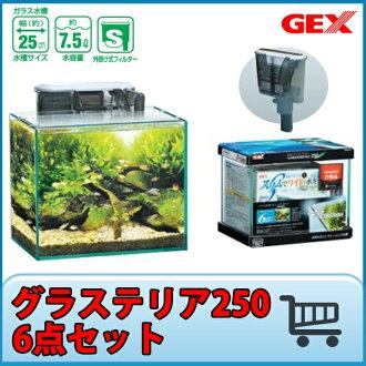 GEX gurasuteria 250 6分安排玻璃水槽25cm水槽