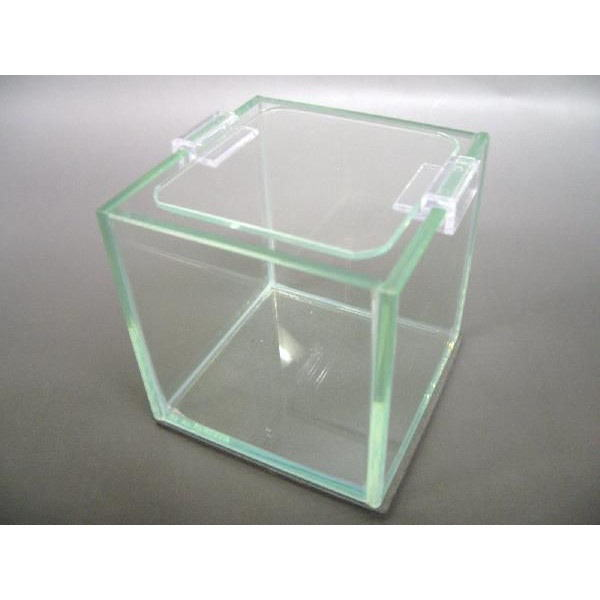 スクエアキューブガラス水槽15cm ベタテラリウム苔リウム