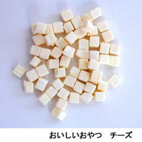 NPFおいしいおやつチーズ10g