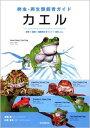 【メール便発送可】爬虫・両生類飼育ガイド カエル