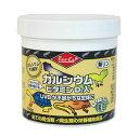 爬虫類 トカゲ カルシウム ビタミン エサ /サプリメント/添加剤/ レップカル カルシウム ビタミンD3 粗目 156g